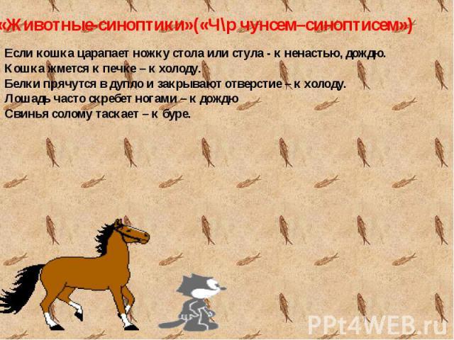 Если кошка царапает ножку стола или стула - к ненастью, дождю.Кошка жмется к печке – к холоду.Белки прячутся в дупло и закрывают отверстие – к холоду.Лошадь часто скребет ногами – к дождюСвинья солому таскает – к буре.