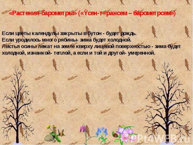 Если цветы календулы закрыты в бутон - будет дождь.Если уродилось много рябины- зима будет холодной. Листья осины лежат на земле кверху лицевой поверхностью - зима будет холодной, изнанкой- теплой, а если и той и другой- умеренной.
