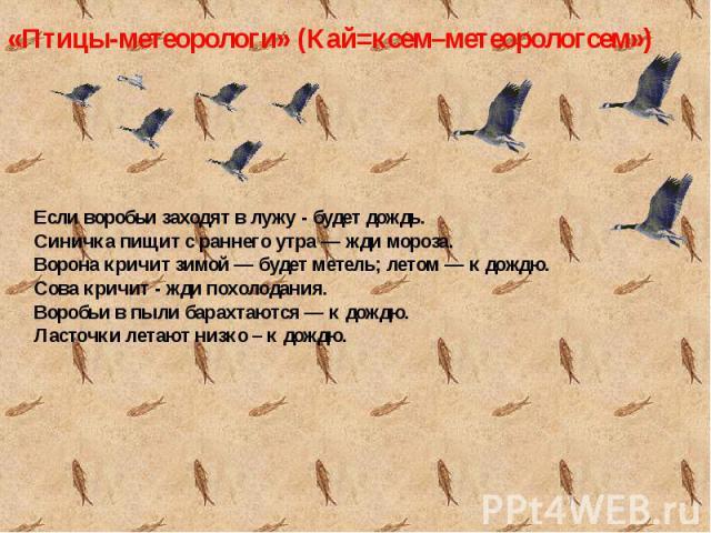 Если воробьи заходят в лужу - будет дождь.Синичка пищит с раннего утра — жди мороза.Ворона кричит зимой — будет метель; летом — к дождю.Сова кричит - жди похолодания.Воробьи в пыли барахтаются — к дождю.Ласточки летают низко – к дождю.