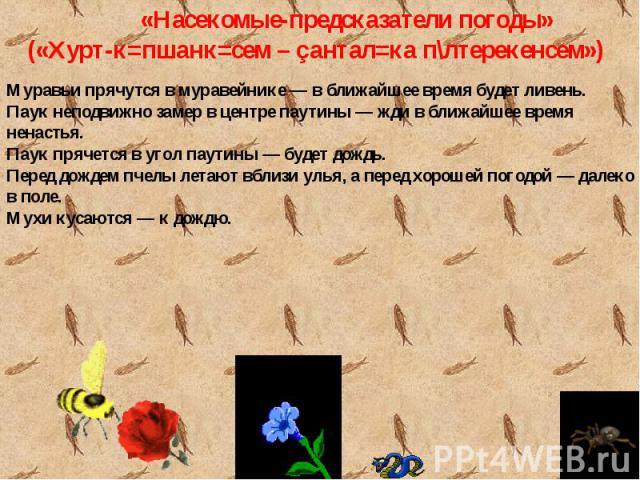 «Насекомые-предсказатели погоды» («Хурт-к=пшанк=сем – çантал=ка п\лтерекенсем»)Муравьи прячутся в муравейнике — в ближайшее время будет ливень.Паук неподвижно замер в центре паутины — жди в ближайшее время ненастья.Паук прячется в угол паутины — буд…
