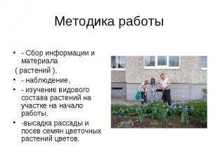 Методика работы- Сбор информации и материала ( растений ), - наблюдение,- изучен