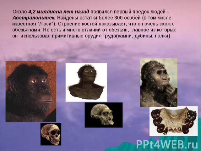 Около 4,2 миллиона лет назад появился первый предок людей - Австралопитек. Найдены остатки более 300 особей (в том числе известная