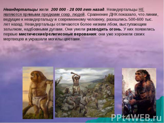 Неандертальцы жили 200 000 - 28 000 лет назад. Неандертальцы НЕ являются прямыми предками совр. людей. Сравнение ДНК показало, что линии, ведущие к неандертальцу и современному человеку, разошлись 500-600 тыс. лет назад. Неандертальцы отличаются бол…