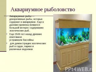 Аквариумное рыболовствоАквариумные рыбы — декоративныерыбы, которых содержат в