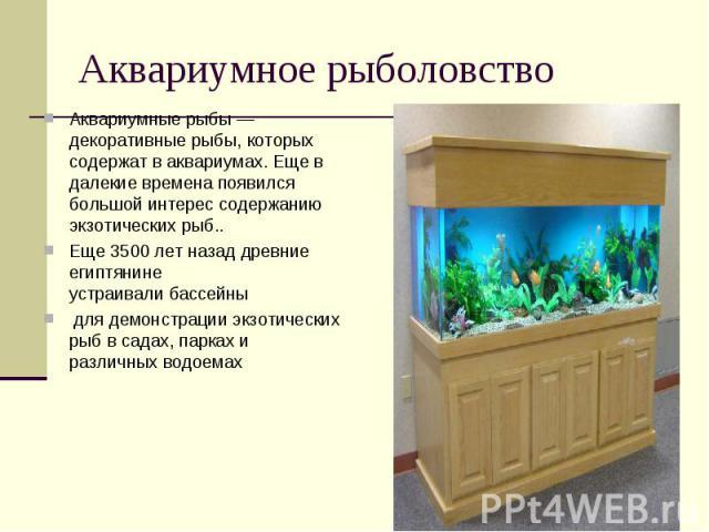 Аквариумное рыболовствоАквариумные рыбы — декоративныерыбы, которых содержат ваквариумах. Еще в далекие времена появился большой интерес содержанию экзотических рыб.. Еще 3500 лет назад древние египтянине устраивалибассейныдля демонстрации экзот…