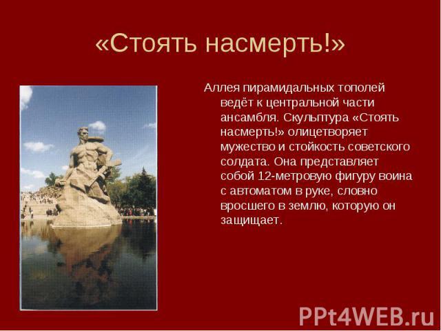 «Стоять насмерть!»Аллея пирамидальных тополей ведёт к центральной части ансамбля. Скульптура «Стоять насмерть!» олицетворяет мужество и стойкость советского солдата. Она представляет собой 12-метровую фигуру воина с автоматом в руке, словно вросшего…