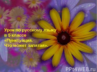 Урок по русскому языку в 5 классе «Пунктуация. Что может запятая».