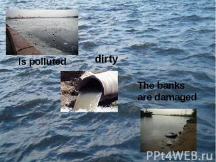 Is polluteddirtyThe banks are damaged