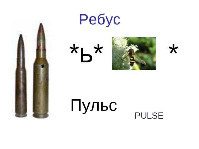 РебусПуля *ь* оса *Пульс