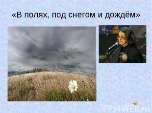 «В полях, под снегом и дождём»