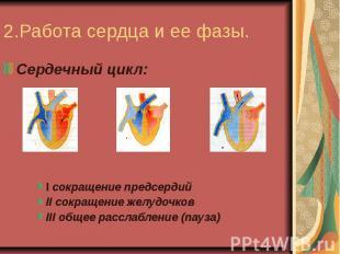 2.Работа сердца и ее фазы.Сердечный цикл:I сокращение предсердийII сокращение же
