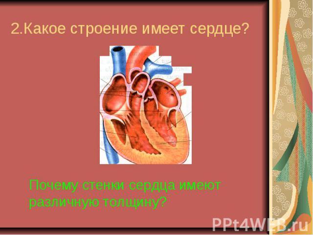 2.Какое строение имеет сердце?Почему стенки сердца имеют различную толщину?