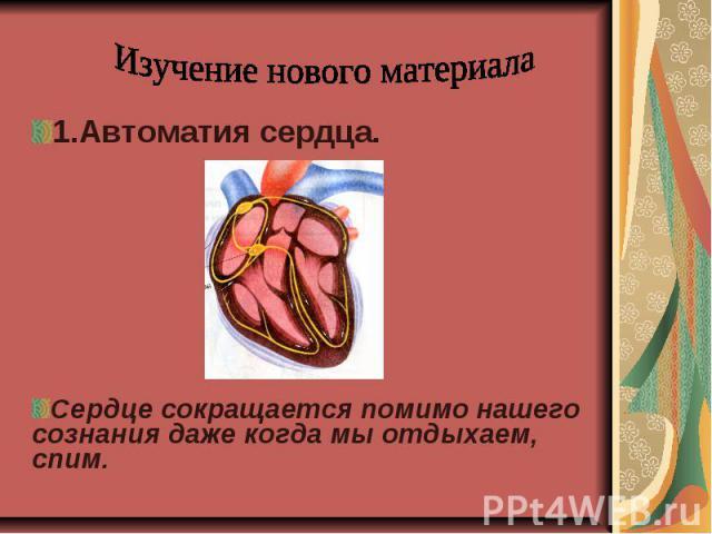 Изучение нового материала1.Автоматия сердца.Сердце сокращается помимо нашего сознания даже когда мы отдыхаем, спим.