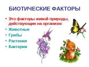 БИОТИЧЕСКИЕ ФАКТОРЫЭто факторы живой природы, действующие на организм:ЖивотныеГр