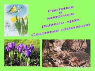 Растения иживотныеродного краяСезонные изменения