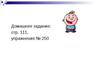 Домашнее задание:стр. 111,упражнение № 250