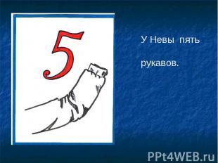 У Невы пять рукавов.