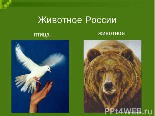 Животное Россииптицаживотное