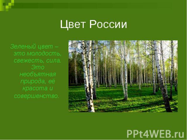Цвет РоссииЗеленый цвет – это молодость, свежесть, сила. Это необъятная природа, её красота и совершенство.
