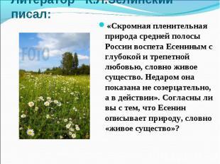 Литератор К.Л.Зелинский писал:«Скромная пленительная природа средней полосы Росс