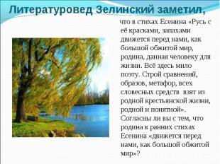 Литературовед Зелинский заметил, что в стихах Есенина «Русь с её красками, запах