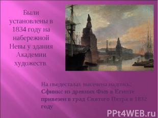 Были установлены в 1834 году на набережной Невы у здания Академии художеств. На