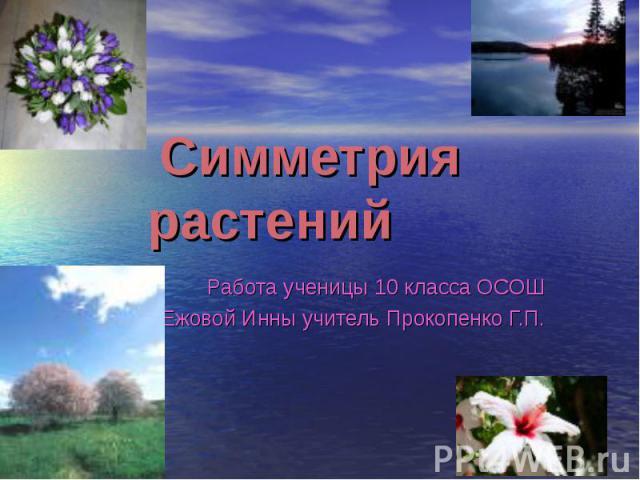Симметрия растений Работа ученицы 10 класса ОСОШ Ежовой Инны учитель Прокопенко Г.П.