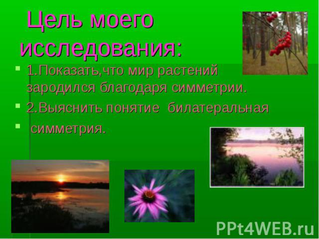 Цель моего исследования: 1.Показать,что мир растений зародился благодаря симметрии.2.Выяснить понятие билатеральная симметрия.