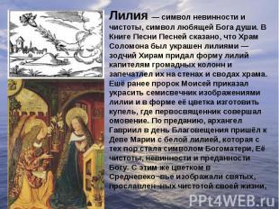 Лилия — символ невинности и чистоты, символ любящей Бога души. В Книге Песни Пес