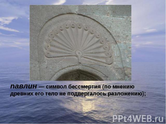 павлин— символ бессмертия (по мнению древних его тело не подвергалось разложению);