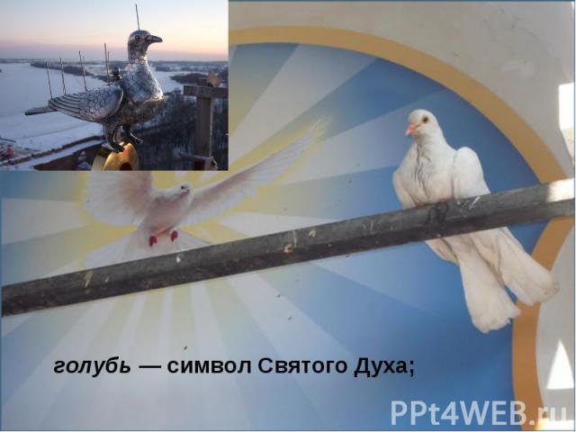 голубь— символ Святого Духа;