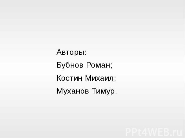 Авторы: Бубнов Роман; Костин Михаил; Муханов Тимур.
