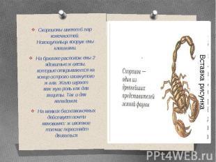 Скорпионы имеют 6 пар конечностей. Ногощупальца вооружены клешнями.На брюшке рас