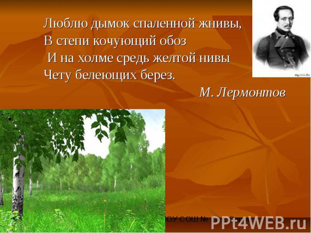 Люблю дымок спаленной жнивы, В степи кочующий обоз И на холме средь желтой нивы Чету белеющих берез.М. Лермонтов