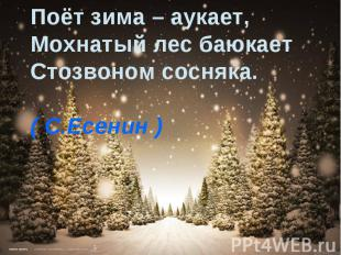 Поёт зима – аукает,Мохнатый лес баюкаетСтозвоном сосняка. ( С.Есенин )