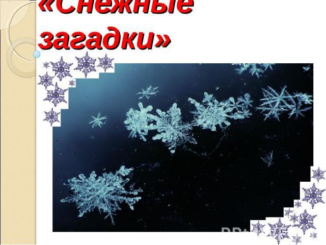 «Снежные загадки»