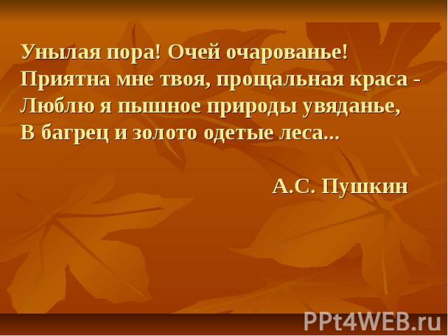 Унылая пора! Очей очарованье! Приятна мне твоя, прощальная краса -Люблю я пышное природы увяданье,В багрец и золото одетые леса... А.С. Пушкин