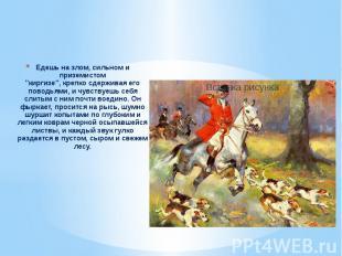 """Едешь на злом, сильном и приземистом""""киргизе"""", крепко сдерживая его поводьями, и"""