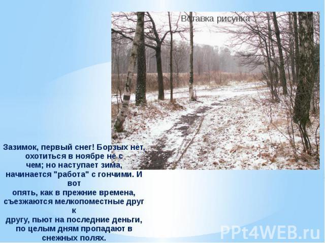 Зазимок, первый снег! Борзых нет, охотиться в ноябре не счем; но наступает зима, начинается
