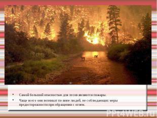 Самой большой опасностью для лесов являются пожары. Чаще всего они возникат по в