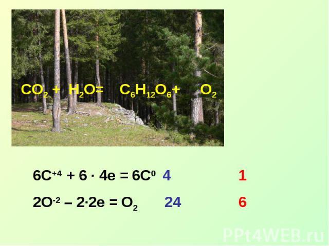 6C+4 + 6 ∙ 4e = 6C0 42O-2 – 2∙2e = O224