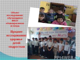 Объект исследования: обучающиеся МКОУ «Новокрасинской ООШ»Предмет исследования:
