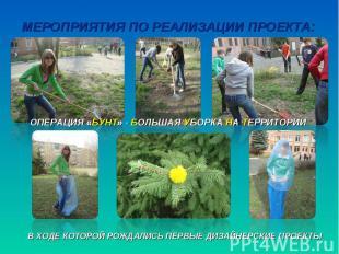 Мероприятия по реализации проекта:Операция «бунт» - большая уборка на территории