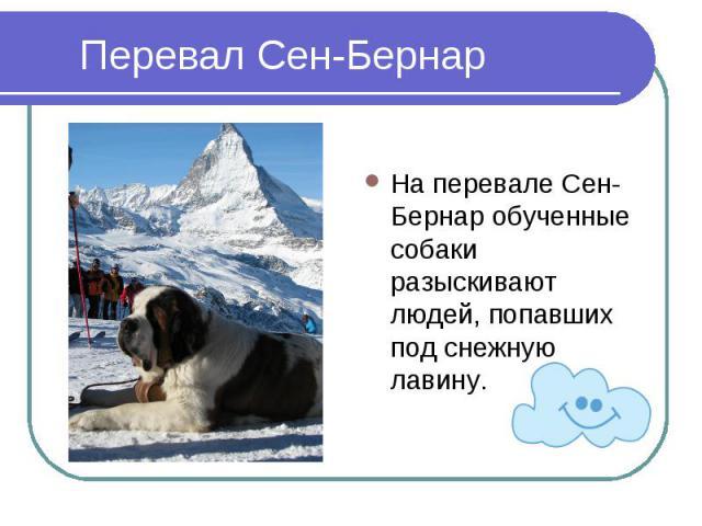 Перевал Сен-БернарНа перевале Сен-Бернар обученные собаки разыскивают людей, попавших под снежную лавину.