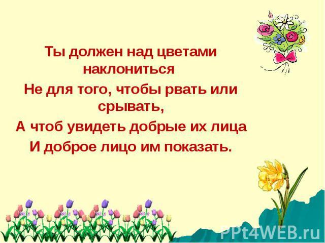Ты должен над цветами наклониться Не для того, чтобы рвать или срывать,А чтоб увидеть добрые их лицаИ доброе лицо им показать.