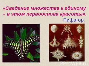 «Сведение множества к единому – в этом первооснова красоты». Пифагор.