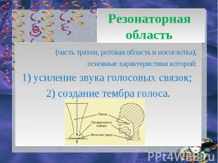 Резонаторная область (часть трахеи, ротовая область и носоглотка), основные хар