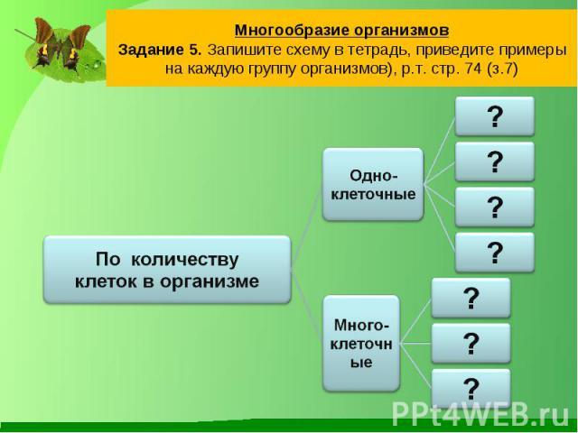 Многообразие организмовЗадание 5. Запишите схему в тетрадь, приведите примеры на каждую группу организмов), р.т. стр. 74 (з.7)По количествуклеток в организме