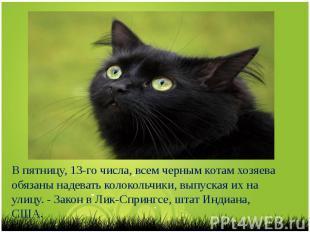 В пятницу, 13-го числа, всем черным котам хозяева обязаны надевать колокольчики,