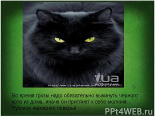 Во время грозы надо обязательно выкинуть черного кота из дома, иначе он притянет